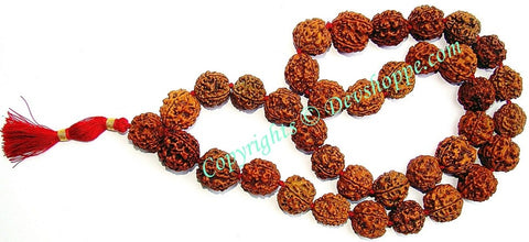 Rudraksha 4 mukhi (four faced) Rudraksha mala of 36+1 beads - Ordinary Quality - Devshoppe