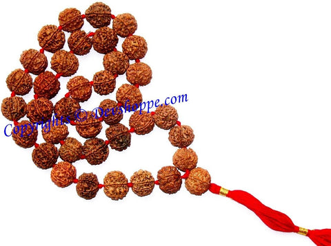 Rudraksha six faced (6 mukhi) rudraksha mala of 36+1 beads - Ordinary quality - Devshoppe