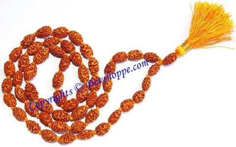 Two faced Rudraksha mala of Javanese origin - Devshoppe