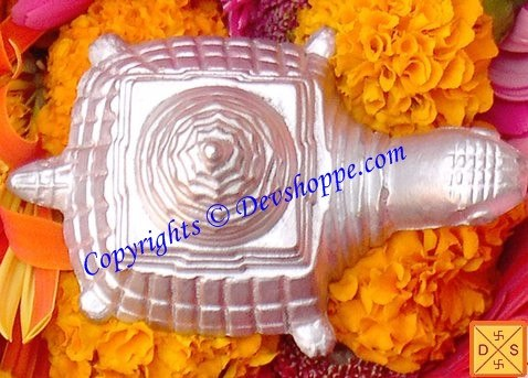 Parad Meru yantra on tortoise for wealth and prosperity - Devshoppe