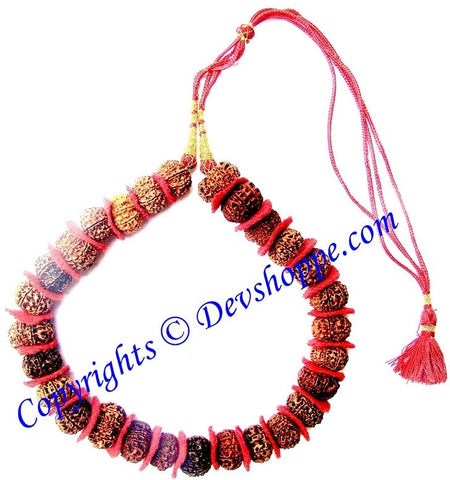 11 Mukhi (Eleven faced) Rudraksha mala of 27+1 beads - Devshoppe