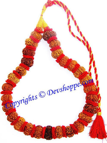 12 mukhi ( Twelve Faced ) Rudraksha mala of 27+1 beads - Devshoppe