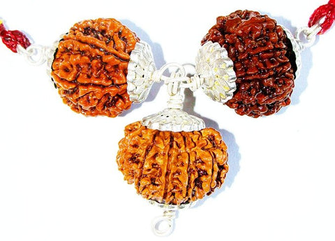 Evil protection Rudraksha Pendant for Protection from Black Magic Tantra Attacks and Evil Eye - Devshoppe