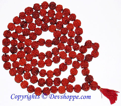 Five faced ( 5 mukhi) big sized Rudraksha beads mala 108+1 beads - Devshoppe - 1
