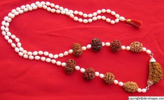 Navgraha Rudraksha Mala with Pearls to Please All Planets - Devshoppe