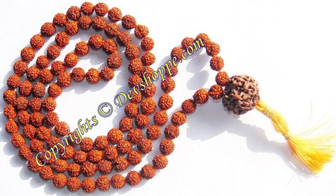 Rudraksha five faced ( 5 mukhi ) ravadhar mala with large Seven faced Sumeru bead (Guru bead) - Devshoppe - 1