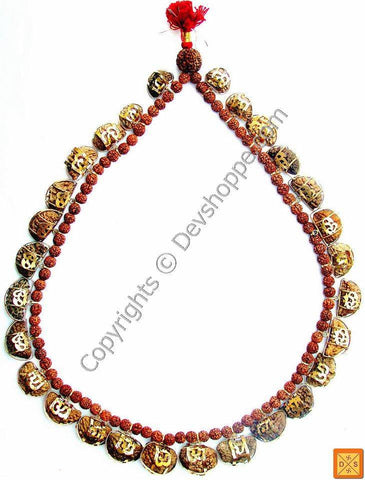 One Faced (1 Mukhi ) Light of God Rudraksha Mala of 27+1 Beads in Silver - Devshoppe
