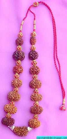 Rudraksha Siddha Mala with 1 -14 Faced Rudrakshas ~ Lab Certified beads - Devshoppe - 1