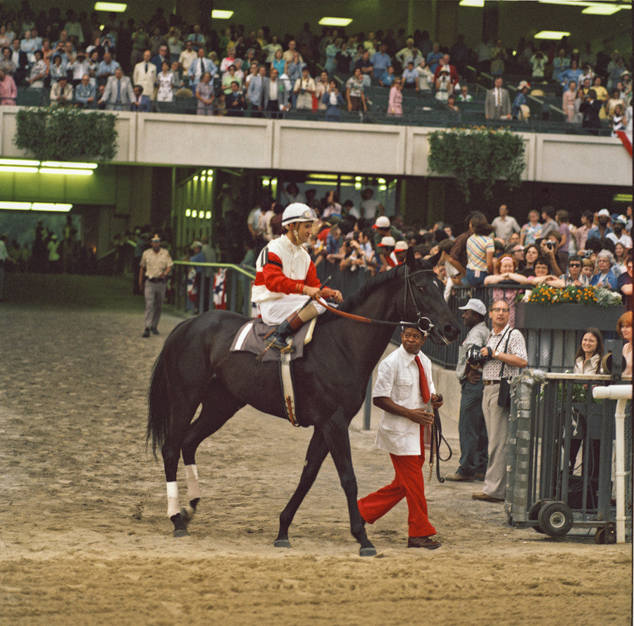 Ruffian's Last Race at Belmont Park, July 1975