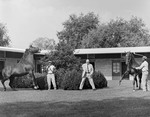 """Tony raised the level of equine photography to an art."" - Leslie Combs II"