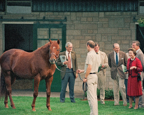 Queen Elizabeth II Viewing Raise A Native at Spendthrift