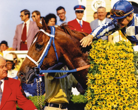 Secretariat in Preakness Winners Circle