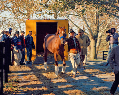 Secretariat Arriving at Claiborne