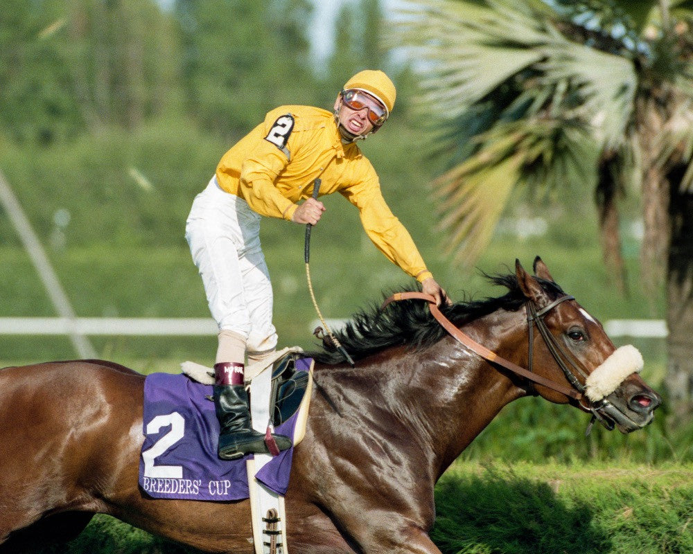 Mike Smith, Lure Breeders Cup Win