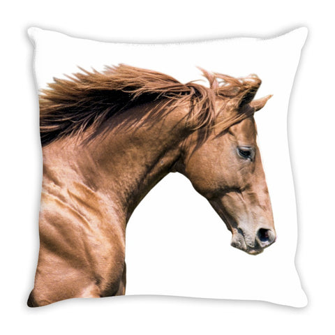 Affirmed Twill Throw Pillow