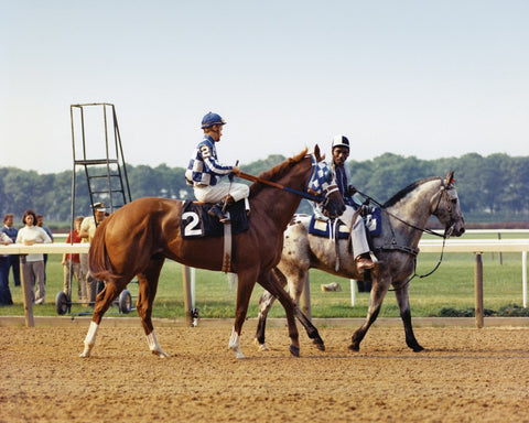 Secretariat on the Track