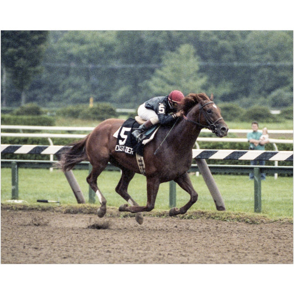 Easy Goer at Saratoga