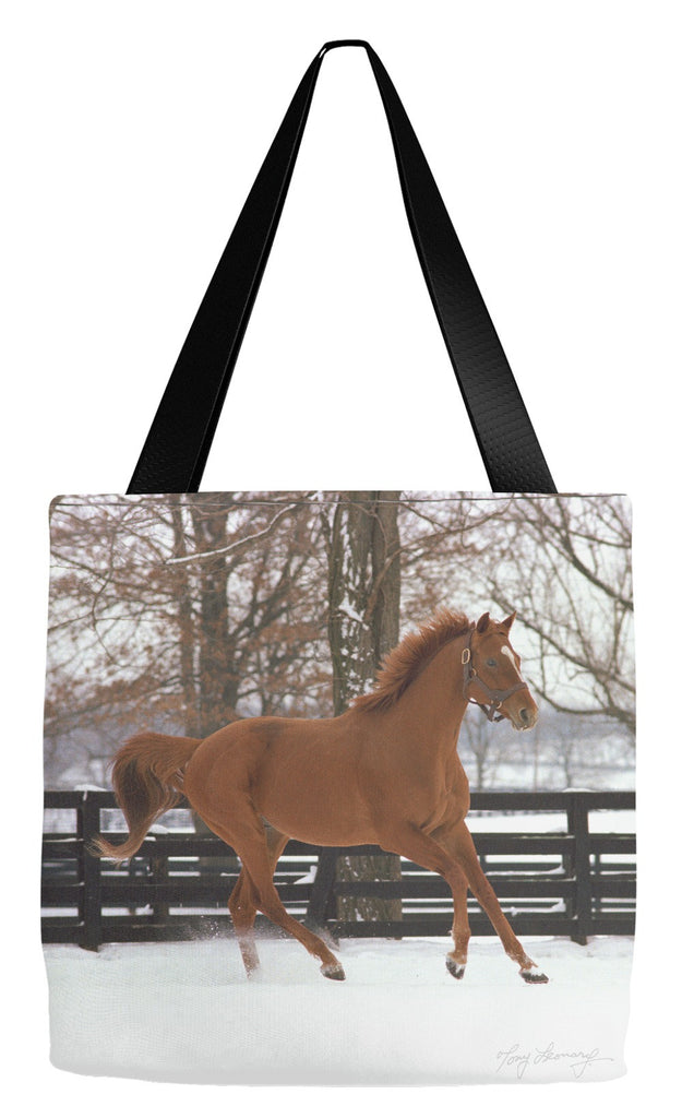 Affirmed In Snow Tote Bag