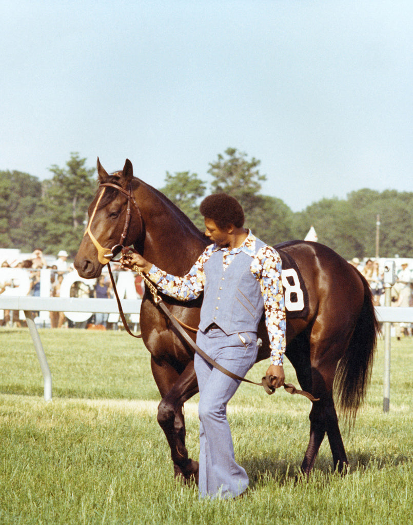 Seattle Slew in Pimlico Paddock