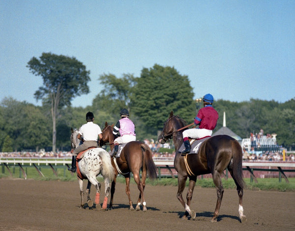 Affirmed and Alydar at the Travers