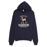 Property of a Hound Hoodie - The Bloodhound Shop