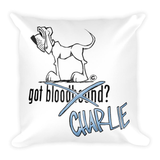 Tim's Got Charlie? Square Pillow - The Bloodhound Shop