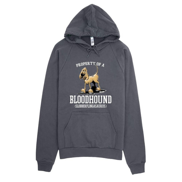 Property of a Hound Hoodie | The Bloodhound Shop
