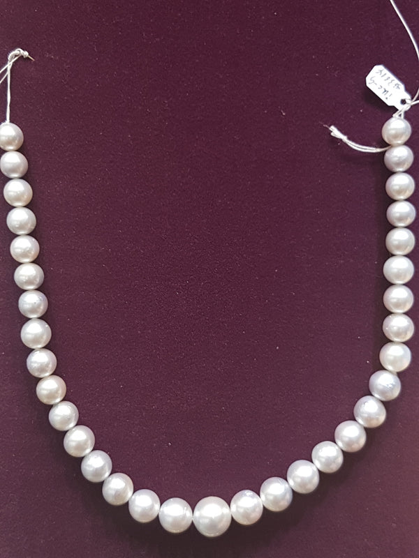 Southsea Pearl Necklace (11-16 mm) - Lucky Diamond 恆福珠寶金行 New York City 169 Canal Street 10013 Jewelry store Playboi Charlie Chinatown @luckydiamondny 2124311180
