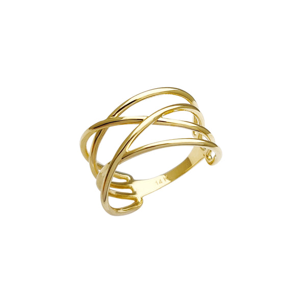 Fancy Interlocked Ring (14K)