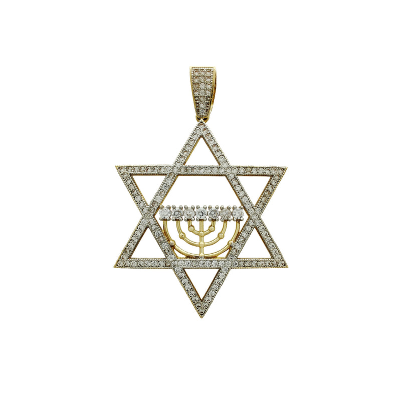 Iced-Out Star of David Pendant (14K) Popular Jewelry New York