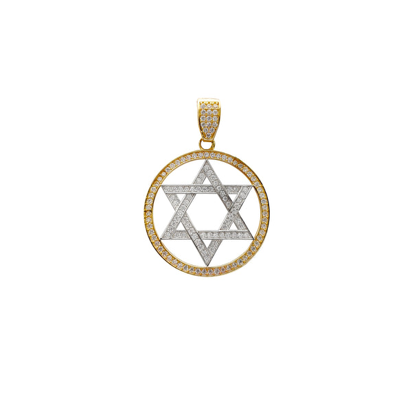 Medium Size Icy Star of David Medallion Pendant (14K) Popular Jewelry New York