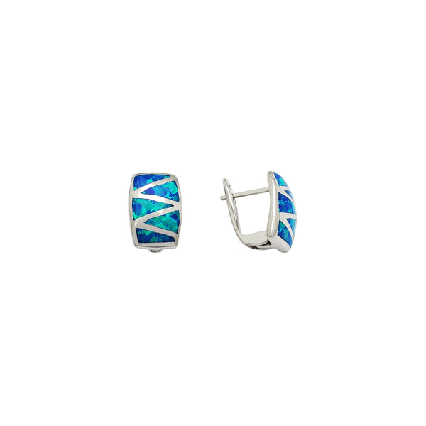 Opal Curved Plate Earrings (Silver)