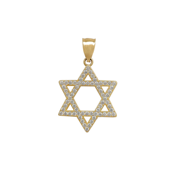 Star of David CZ Pendant (14K) Popular Jewelry New York