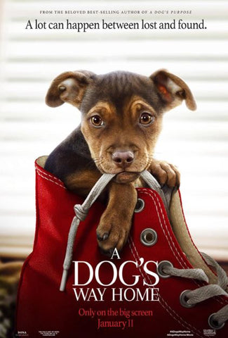 A DOG'S WAY HOME HD GOOGLE PLAY DIGITAL COPY MOVIE CODE (DIRECT INTO GOOGLE PLAY) CANADA