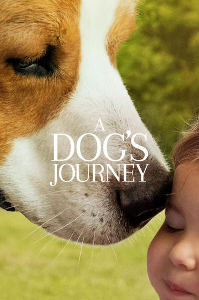 A DOG'S JOURNEY HD GOOGLE PLAY DIGITAL COPY MOVIE CODE