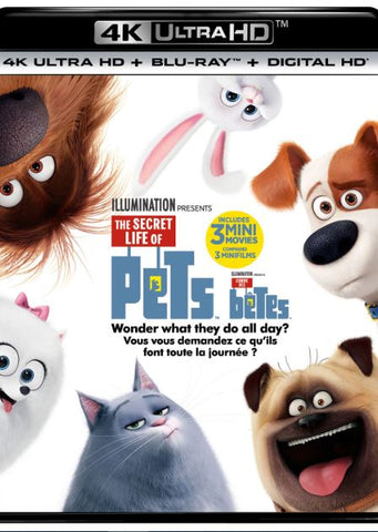 THE SECRET LIFE OF PETS 4K UHD iTunes DIGITAL COPY MOVIE CODE