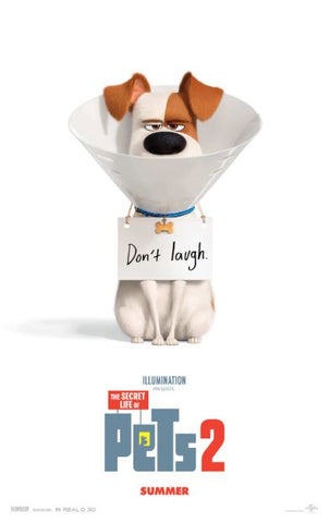 SECRET LIFE OF PETS 2 HD GOOGLE PLAY DIGITAL COPY MOVIE CODE