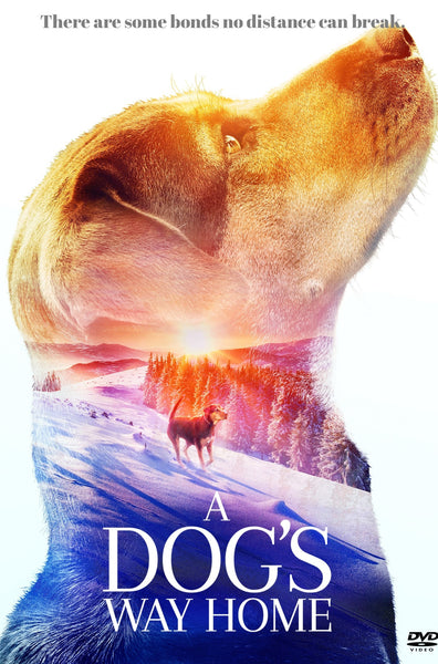 A DOG'S WAY HOME HD GOOGLE PLAY DIGITAL COPY MOVIE CODE (READ DESCRIPTION  FOR REDEMPTION SITE/INFO) CANADA