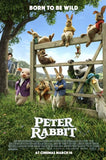 PETER RABBIT HDX UV DIGITAL MOVIE CODE