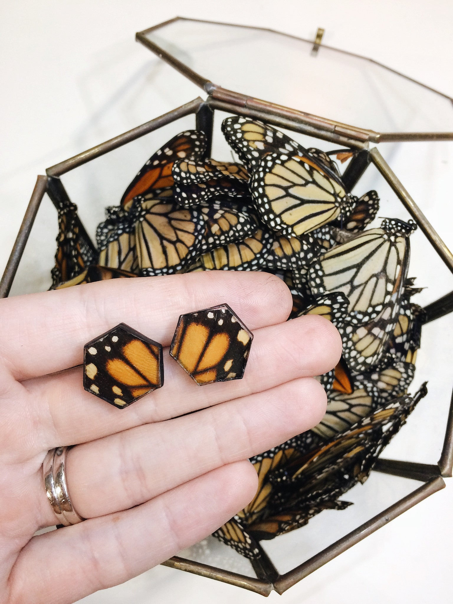 Monarch Honeycomb Stud Earrings