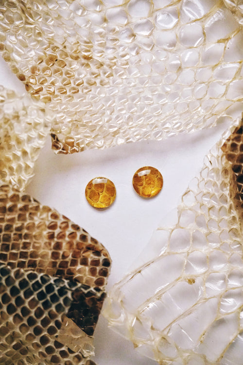 Snake Skin Shed Gold Simple Stud Earrings