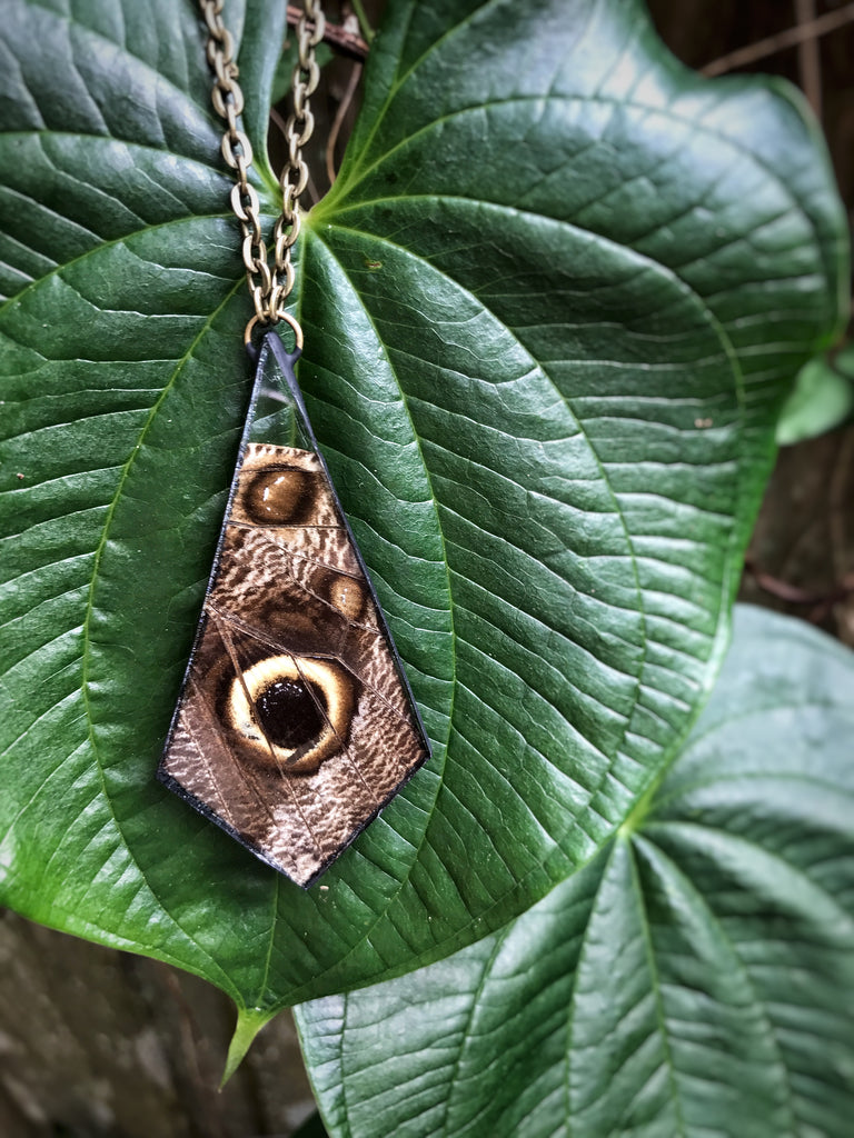 Owls Eye Wing Necklace
