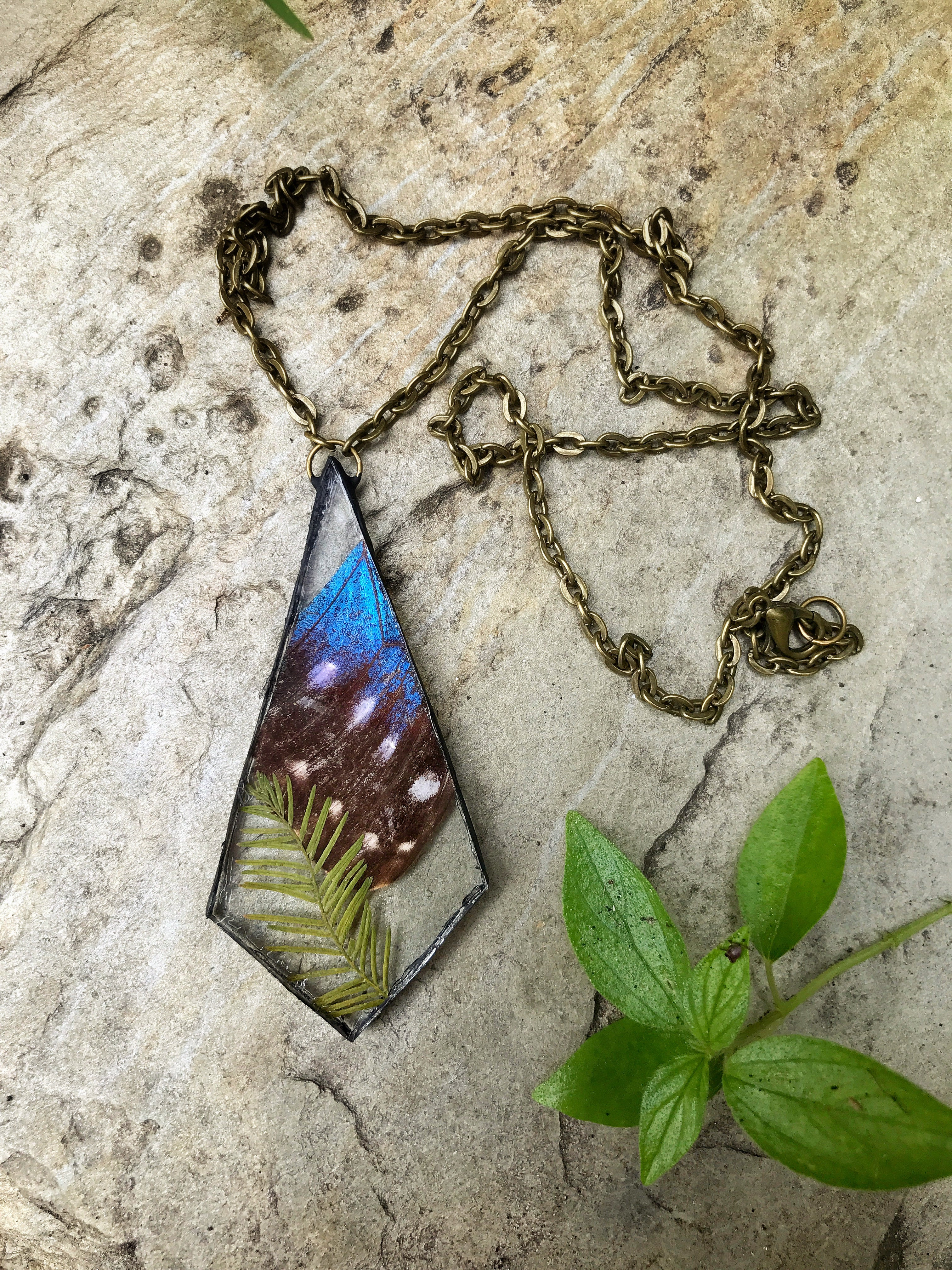Morpho Wing Necklace with Leafs
