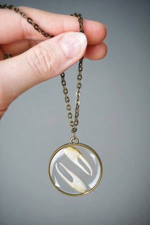 Crab Claw Yin Yang Circle Necklace