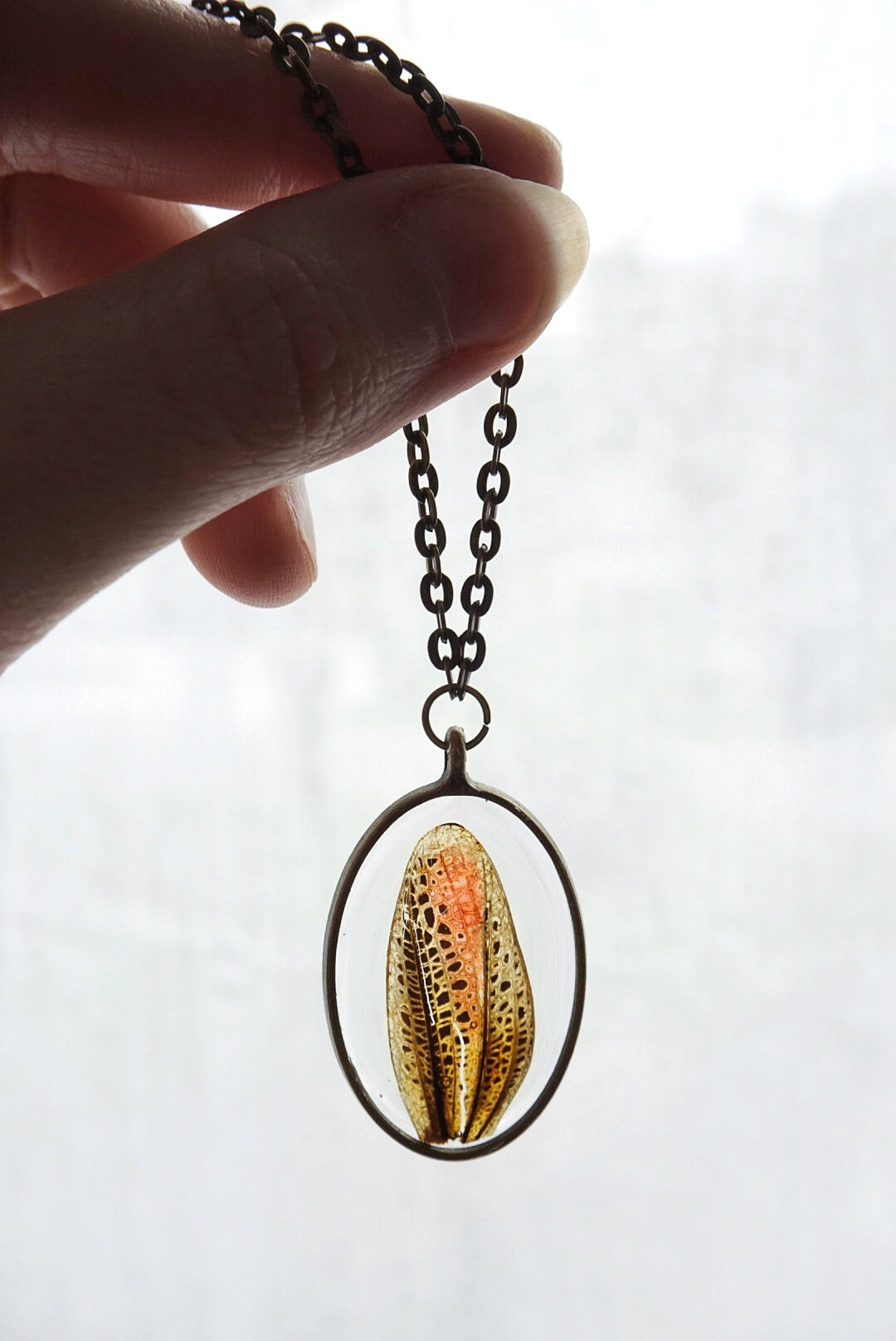 Lubber Grasshopper Wing Necklace
