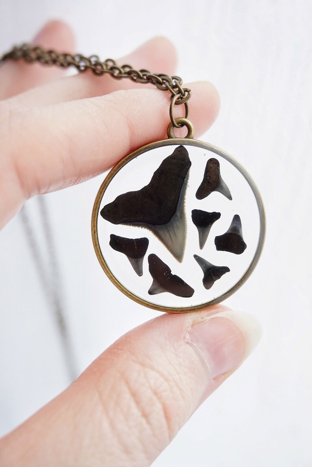 Shark Teeth Collage Circle Necklace