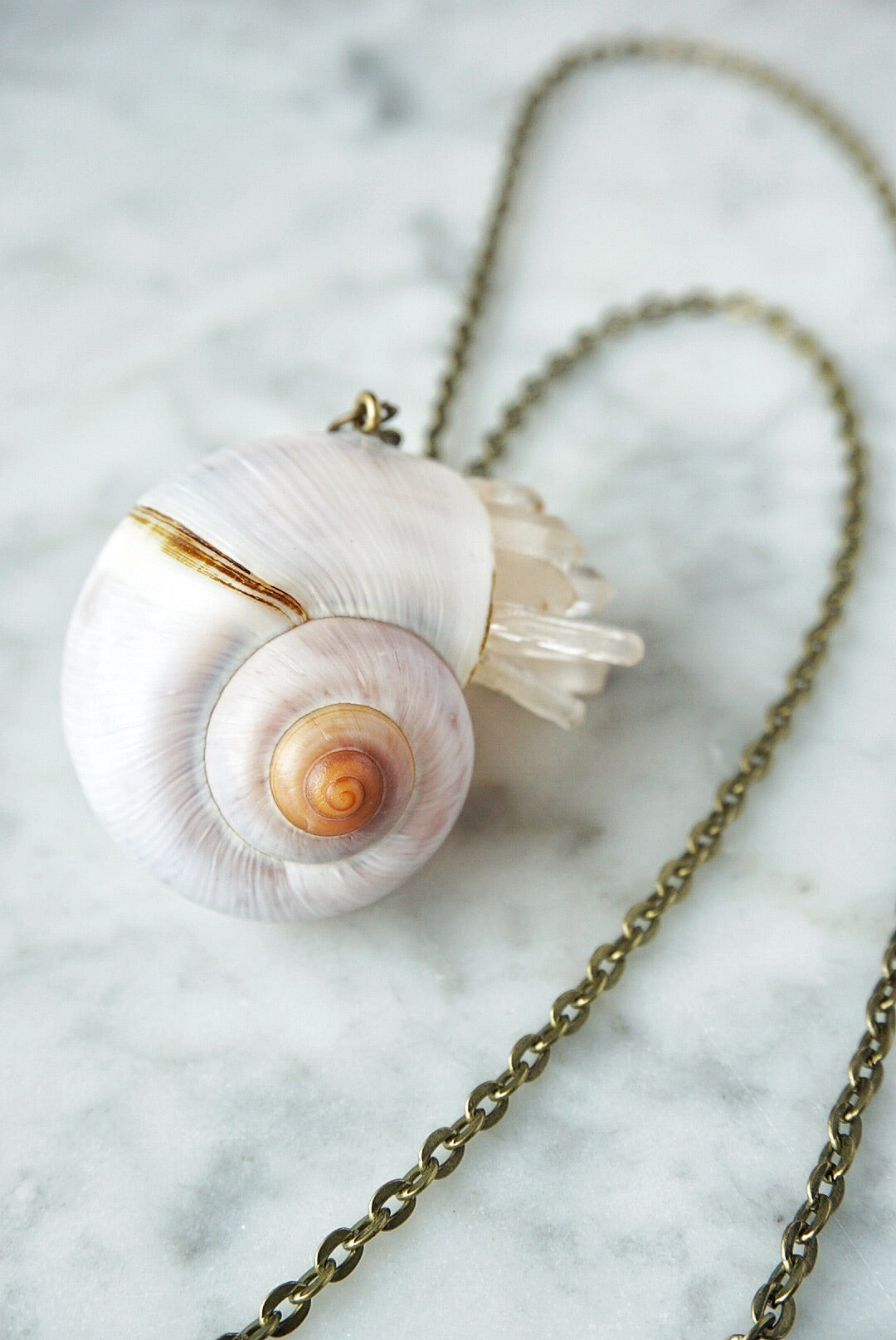 Crystal Snail Shell Necklace