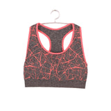 Professional Women Shockproof Sports Bra