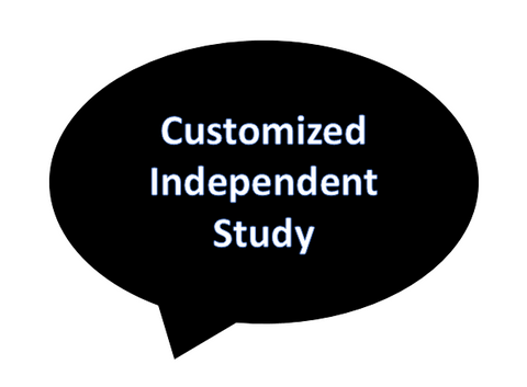 Customized Independent Study Project