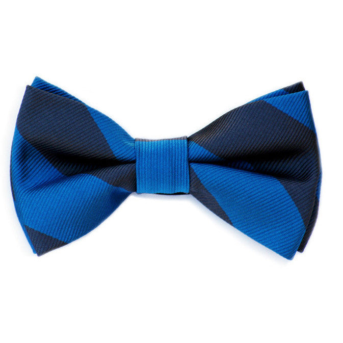 Blue and Navy Bow Tie